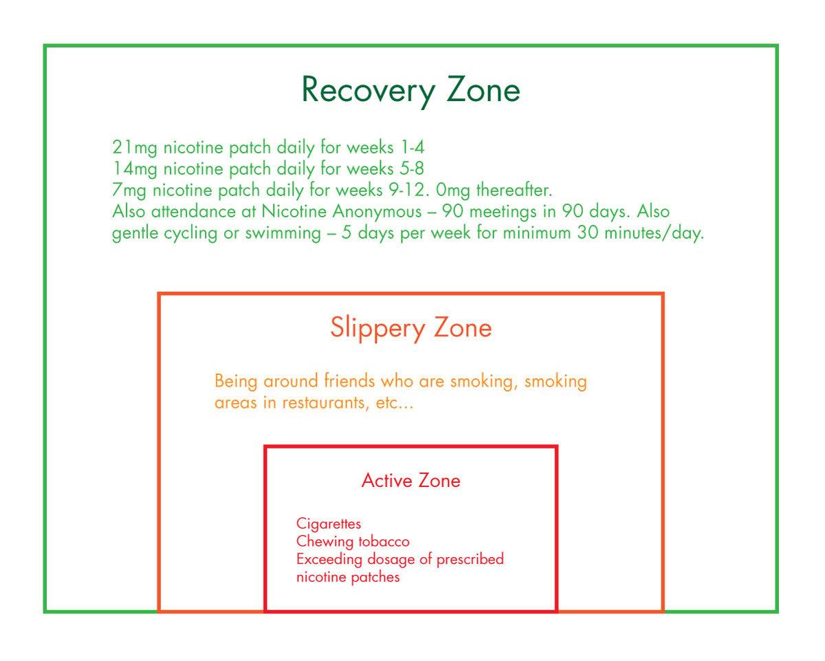 The 3 Circles Addiction Model2
